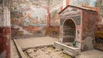 Pompeii Tour For Families With Pick Up in Naples or Sorrento, Naples, Cultural Tours
