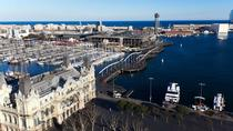 Private Shore Excursion in Barcelona, Barcelona, Ports of Call Tours
