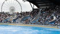 Family tour from Monaco for the whole family parks and attractions, Monaco, Cultural Tours