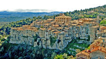 Private St. Paul de Vence, Tourrettes, and Gourdon Tour from Nice, Nice, Private Sightseeing Tours