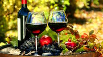 Private Tour: 4-Hour Sightseeing and Wine Tasting Tour in Nice, Nice, Private Sightseeing Tours