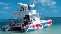 All-Inclusive Catamaran Cruise from Punta Cana, プンタカナ