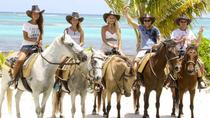 Horseback Riding Tour Punta Cana Ecological Reserve, Punta Cana, Horseback Riding