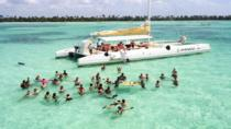 Saona Island Day Trip, Punta Cana, Jet Boats & Speed Boats