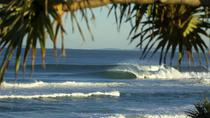10-Day Surf Adventure from Sydney to Brisbane Including Coffs Harbour, Byron Bay and Gold Coast, ...