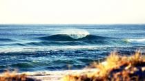 7 días Byron Bay, Evans Head y Moonee Beach Surf Safari de Brisbane, Gold Coast o Byron Bay, Byron ...