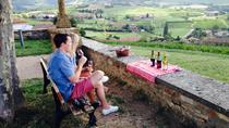 4-Hour Private Beaujolais Wine Tasting Tour from Lyon, Lyon, Private Sightseeing Tours