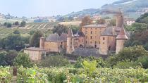 Beaujolais South Gourmet Wine Tour with Tasting from Lyon , Lyon, Wine Tasting & Winery Tours