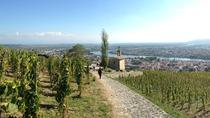 Cotes du Rhone Tour with Wine and Chocolate Tasting, Lyon, Private Sightseeing Tours