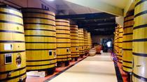 Cotes du Rhone Tour with Wine and Chocolate Tasting, Lyon, Wine Tasting & Winery Tours