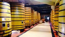 Full-Day Côtes du Rhône Wine Tasting Tour from Lyon, Lyon, Private Sightseeing Tours