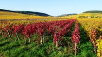 Private Castles of Burgundy Tour with Wine Tasting from Lyon, Lyon, Private Day Trips