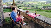 Private Tour: Half-Day Beaujolais Tour with Wine Tasting from Lyon, Lyon