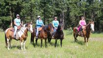 Horseback Riding in Ashcroft, British Columbia, Horseback Riding