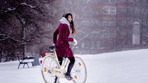 Winter Ride on Ebike in Prague, Prague, Bike & Mountain Bike Tours