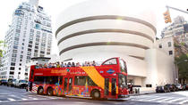 New York City FreeStyle Pass, New York City, Hop-on Hop-off Tours