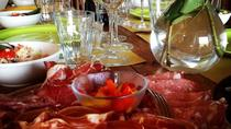 Private Organic vineyard Tour, wine, Olive Oil, Balsamic tasting and Light Meal, San Gimignano, ...