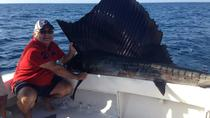 Private Deep Sea Fishing in Acapulco, Acapulco, Private Sightseeing Tours