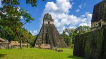 One Day Tour to Tikal from Guatemala City, Guatemala City, Day Trips