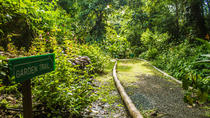 Lushan Country Life Nature Park Tour, St Lucia, Half-day Tours