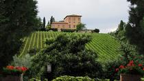 Siena, San Gimignano and Chianti Wine Region Small Group Day Trip from Florence, Florence, Private ...