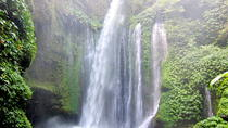 Private Tour: Amazing Waterfalls of Lombok, Lombok