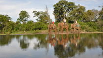 Elephant Back Safari from Victoria Falls, Victoria Falls, Nature & Wildlife