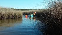 Bon Secour National Wildlife Refuge Kayak Tour, Gulf Shores, Kayaking & Canoeing