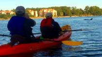 Dolphins at Sunset Kayak Tour, Gulf Shores, Kayaking & Canoeing