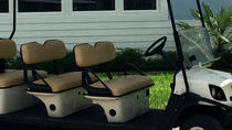 Street Legal Golf Cart Rental in Fort Lauderdale, Fort Lauderdale, Self-guided Tours & Rentals