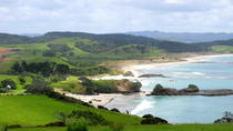 Private Day Trip to Tawharanui Regional Park from Auckland, Auckland, Private Day Trips