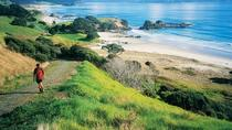 Private Full-Day Tour to Tawharanui Regional Park from Auckland, Auckland, Private Day Trips