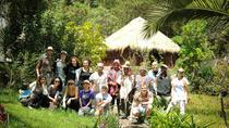 AYAHUASCA HEALING RETREAT - 3 DAYS AT SACRED VALLEY CENTER, Cusco, Multi-day Tours