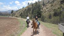 Horseback Riding Cusco: Experience the Peruvian Paso Horses, Cusco, Horseback Riding