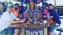 Tour Bar per pedalata di Chattanooga, Chattanooga, Bar, Club & Pub Tours