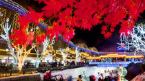 Seasonal Offer: Independent Tour to Yanqing Ice Lanterns Festival with Private Transfer , Beijing, ...