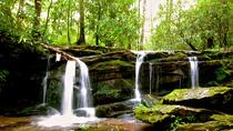 Aventura por las cataratas de las Grandes Montañas Humeantes, Great Smoky Mountains National Park, Hiking & Camping