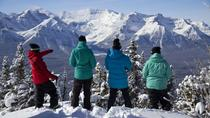 Lake Louise Scenic Snowshoe Tour, Banff, null