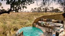 Private Tour: 6-Day Luxury Tanzania Safari Adventure (All Inclusive), Arusha, Multi-day Tours