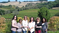 Northern Sonoma Small Group Wine Tour, Napa & Sonoma, Boat Rental