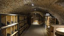 Burgundy History and Wine Tasting Class, Dijon, Wine Tasting & Winery Tours