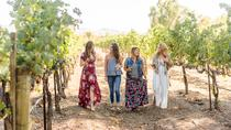 Full-Day Tri-Valley Wine Tasting and Shopping Tour from San Francisco, San Francisco, Wine Tasting ...