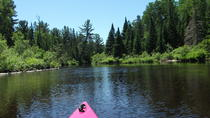 1-Day Algonquin Art and Kayak or Canoe Eco-Tour, Ontario
