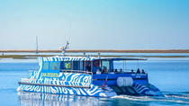 Boat trip from Faro to Ilha Deserta by Ferry, Faro, Kid Friendly Tours & Activities
