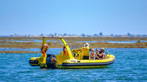 Ilha Deserta - Guided Nature Tour - Ria Formosa, Faro, Kid Friendly Tours & Activities