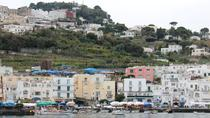 Pompeii Sorrento and Capri Day Private Tour with Driver and Local Guide, Naples, Private...