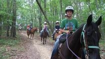 Children's Holiday Camp with Horse Riding near Budapest, Budapest
