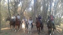Horse Riding Camp near Budapest for Adults and Children, Budapest