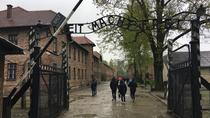 Private Tour from Prague to Auschwitz-Birkenau Memorial, Prague, Private Sightseeing Tours
