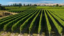 Cruise Ship Excursion Full Day Marlborough Wine Region Tour from Picton, Picton, Cultural Tours